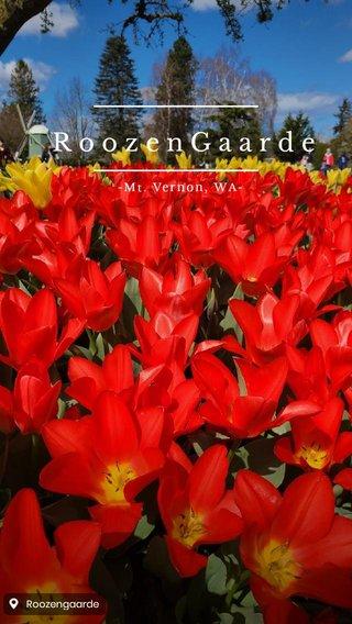 RoozenGaarde -Mt. Vernon, WA-