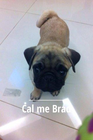 Cal me Brad