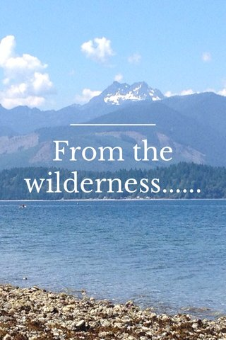 From the wilderness......