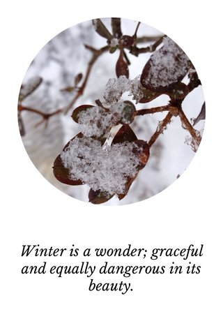 Winter is a wonder; graceful and equally dangerous in its beauty.