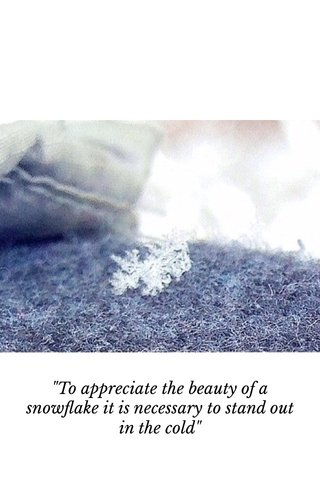 """""""To appreciate the beauty of a snowflake it is necessary to stand out in the cold"""""""