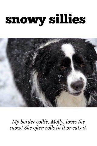 snowy sillies My border collie, Molly, loves the snow! She often rolls in it or eats it.
