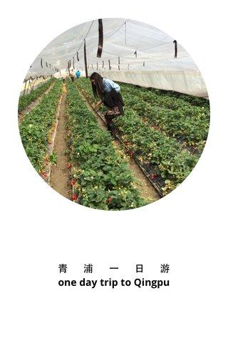青 浦 一 日 游 one day trip to Qingpu