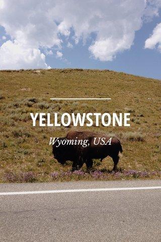 YELLOWSTONE Wyoming, USA
