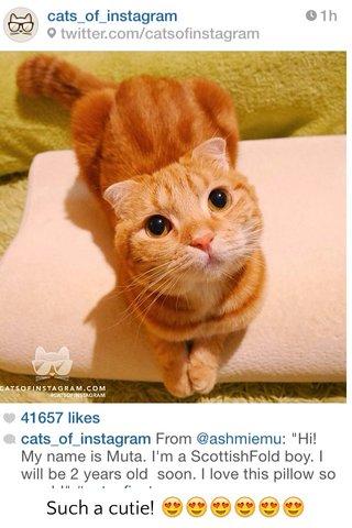 Such a cutie! 😍😍😍😍😍😍