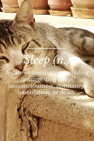 Sleep (n.) A state of inactivity resembling or suggesting sleep; unconsciousness, dormancy, hibernation, or death.