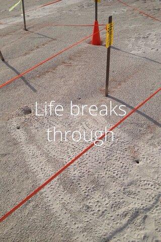 Life breaks through