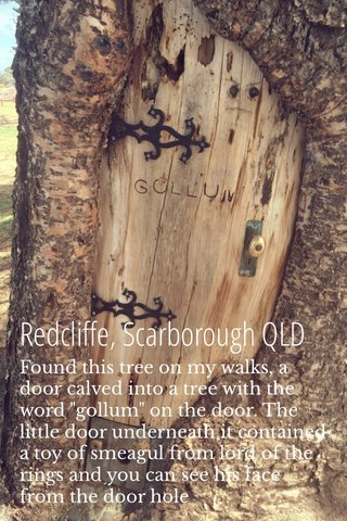 """Redcliffe, Scarborough QLD Found this tree on my walks, a door calved into a tree with the word """"gollum"""" on the door. The little door underneath it contained a toy of smeagul from lord of the rings and you can see his face from the door hole"""