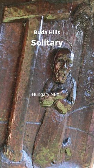 Solitary Buda Hills Hungary NEXT