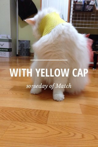 WITH YELLOW CAP someday of Match