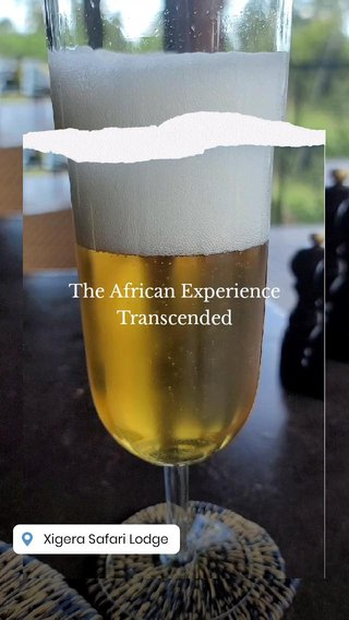 The African Experience Transcended