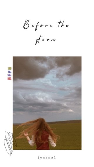 Before the storm journal