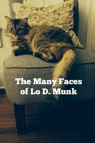 The Many Faces of Lo D. Munk