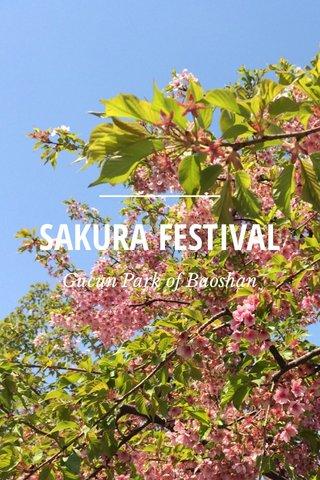 SAKURA FESTIVAL Gucun Park of Baoshan