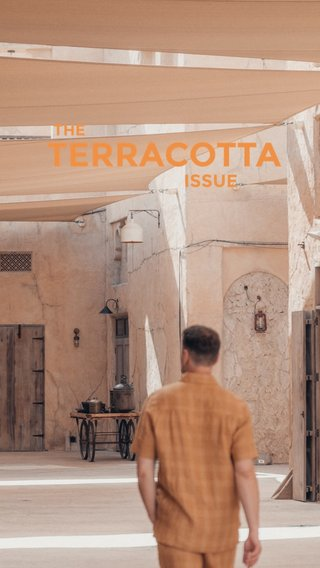 TERRACOTTA ISSUE THE