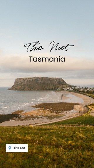 The Nut Tasmania