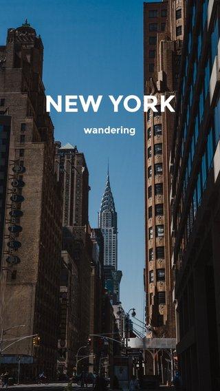 NEW YORK wandering
