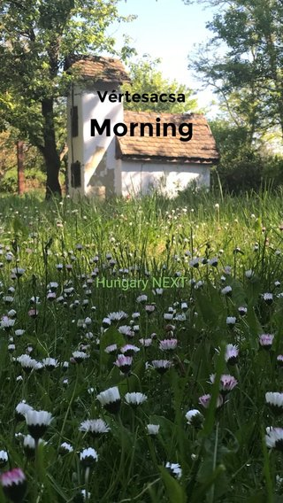 Morning Vértesacsa Hungary NEXT