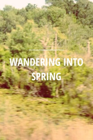 WANDERING INTO SPRING