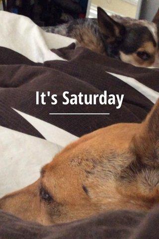 It's Saturday
