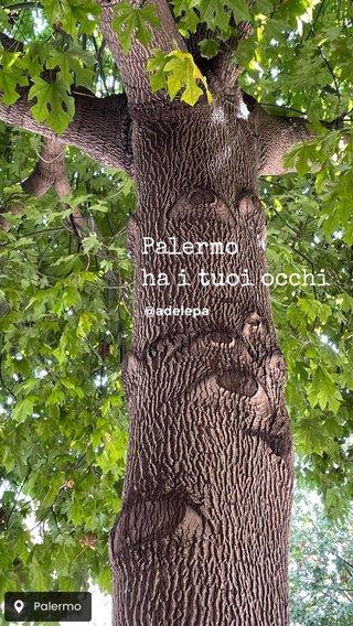 Palermo ha i tuoi occhi @adelepa