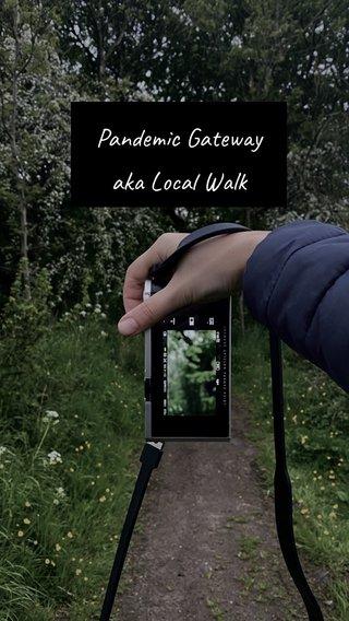 Pandemic Gateway aka Local Walk