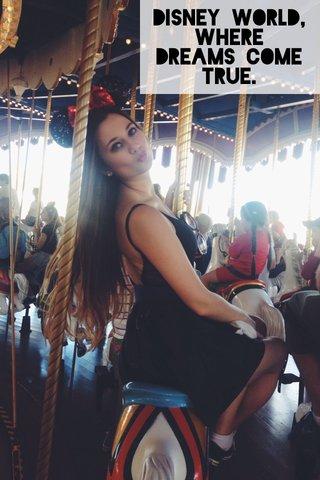 Disney World, Where dreams come true.