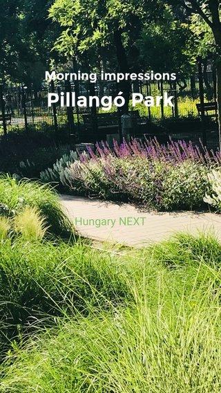 Pillangó Park Morning impressions Hungary NEXT
