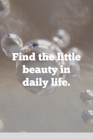 Find the little beauty in daily life.