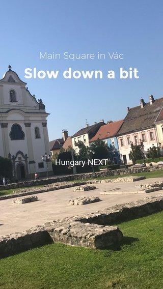 Slow down a bit Main Square in Vác Hungary NEXT