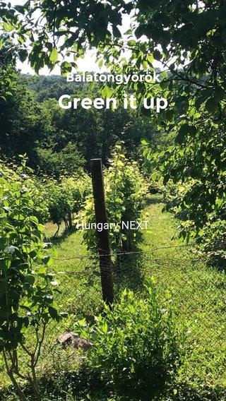 Green it up Balatongyörök Hungary NEXT