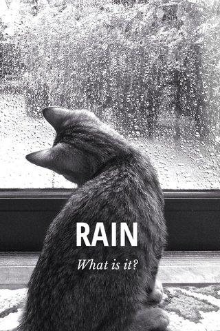 RAIN What is it?