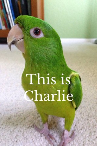 This is Charlie