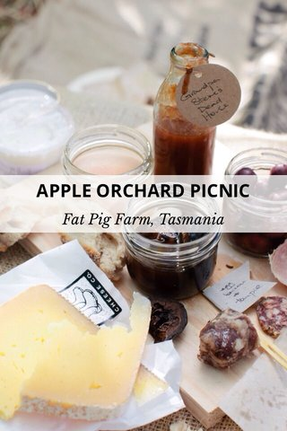APPLE ORCHARD PICNIC Fat Pig Farm, Tasmania