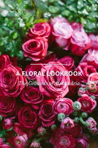 A FLORAL LOOKBOOK The Grounds of Alexandria