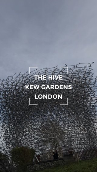 THE HIVE KEW GARDENS LONDON
