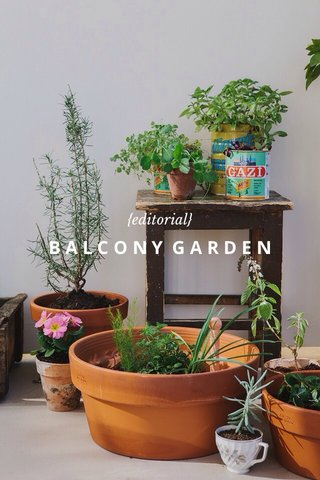 BALCONY GARDEN {editorial}