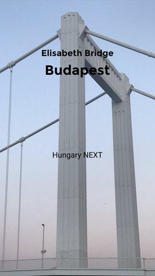 Budapest Elisabeth Bridge Hungary NEXT