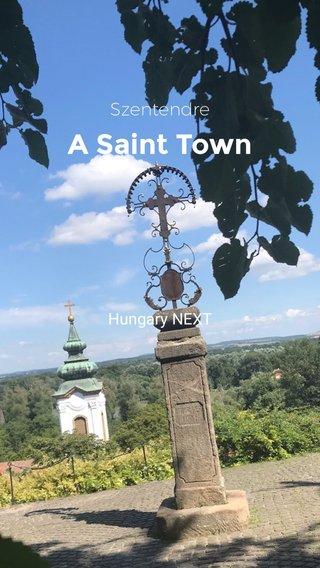 A Saint Town Szentendre Hungary NEXT