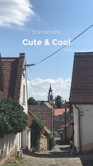 Cute & Cool Szentendre Hungary NEXT