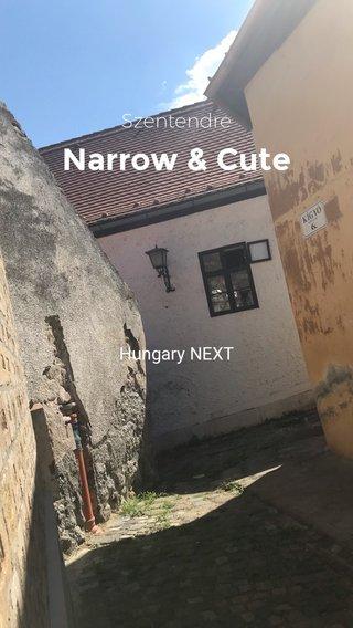 Narrow & Cute Szentendre Hungary NEXT