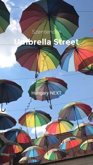 Umbrella Street Szentendre Hungary NEXT