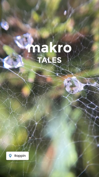 makro TALES