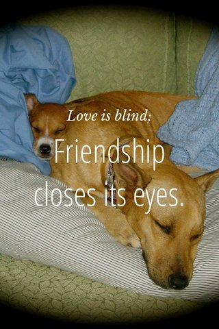 Friendship closes its eyes. Love is blind;