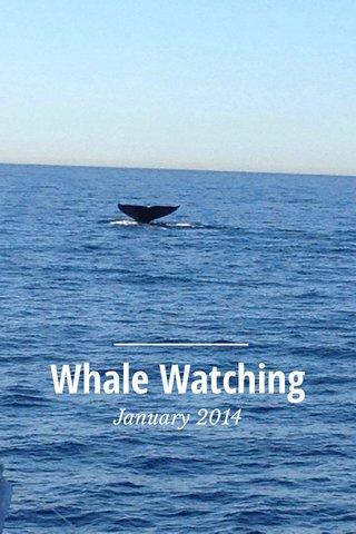Whale Watching January 2014