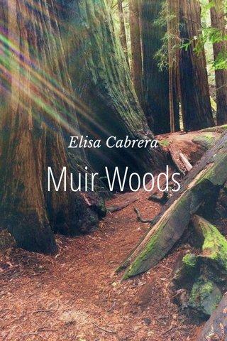 Muir Woods Elisa Cabrera