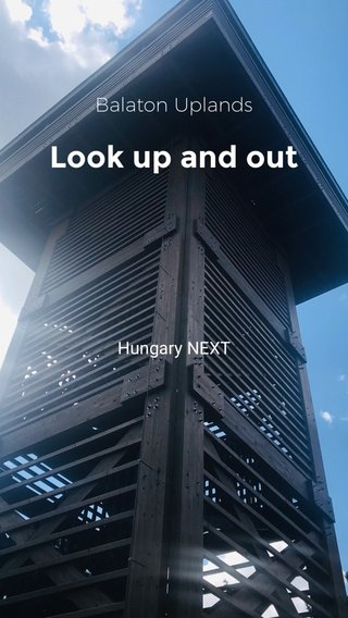 Look up and out Balaton Uplands Hungary NEXT