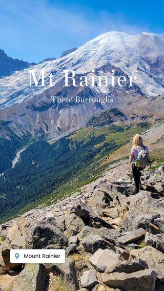 Mt Rainier Three Burroughs
