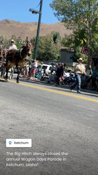 The Big Hitch always closes the annual Wagon Days Parade in Ketchum, Idaho!