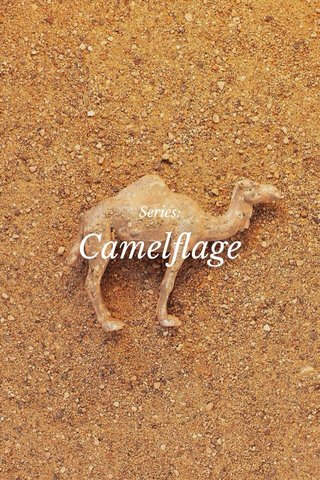 Camelflage Series: